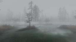 CreepySwamp2